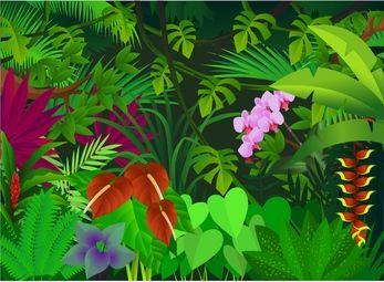 clip art jungle flowers.