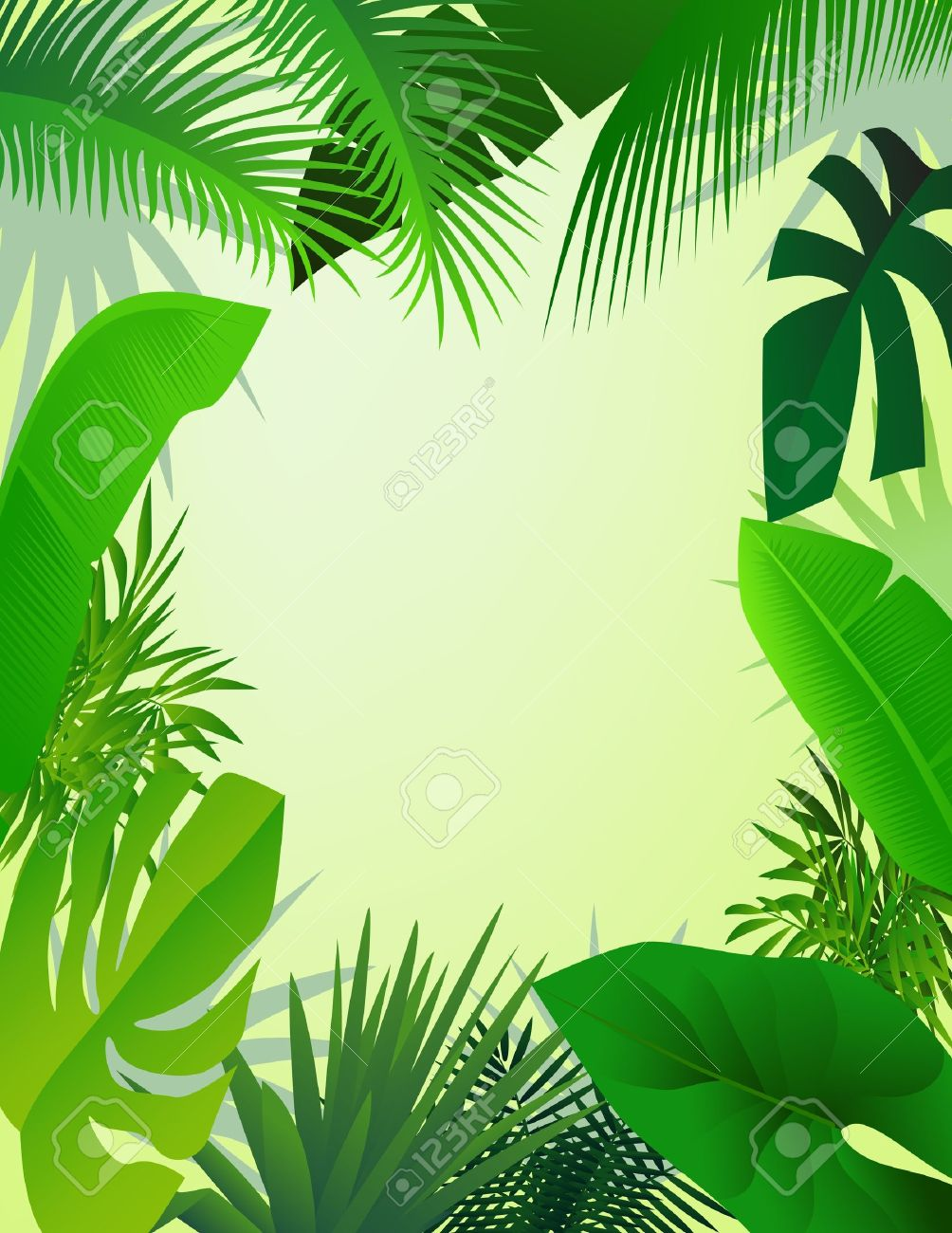 24,247 Jungle Frame Stock Vector Illustration And Royalty Free.