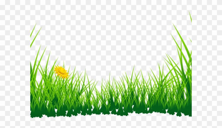 Lawn Clipart Jungle Grass.