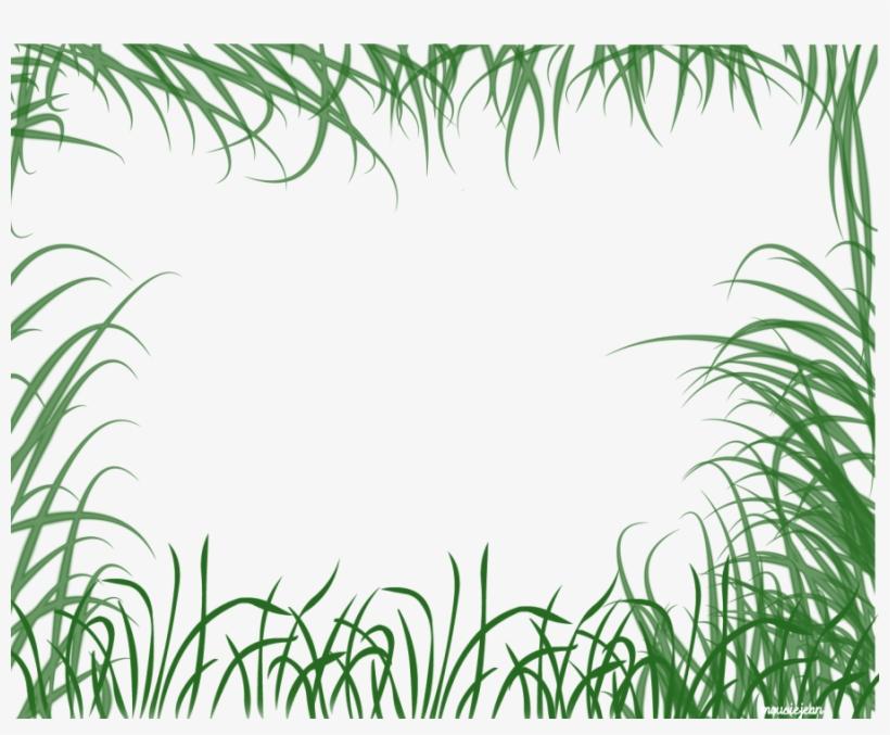 Jungle Clipart Natural Vegetation.