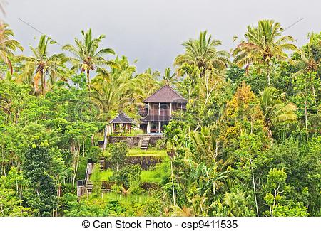 Stock Images of wooden house in the jungle on the island of Bali.