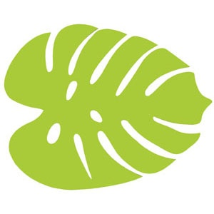 Jungle Leaf Clipart