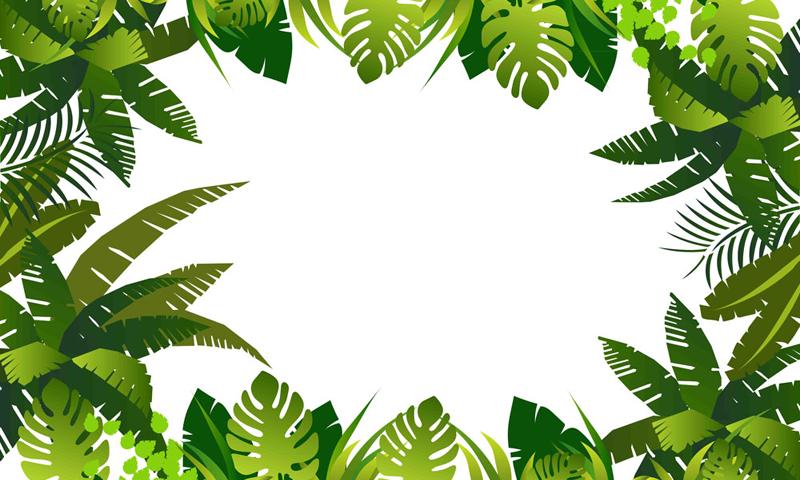 PNG Jungle Leaf Transparent Jungle Leaf.PNG Images..