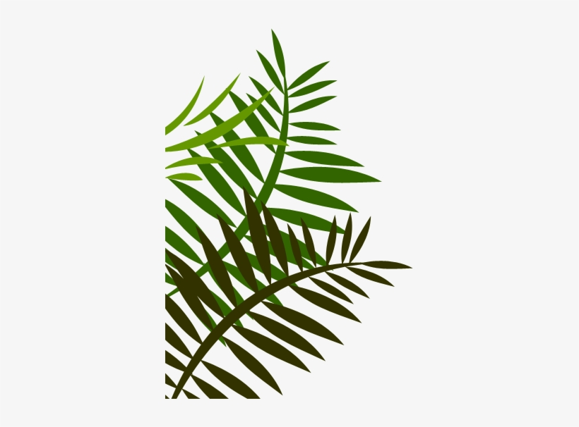 Jungle Leaves Png Image Library.