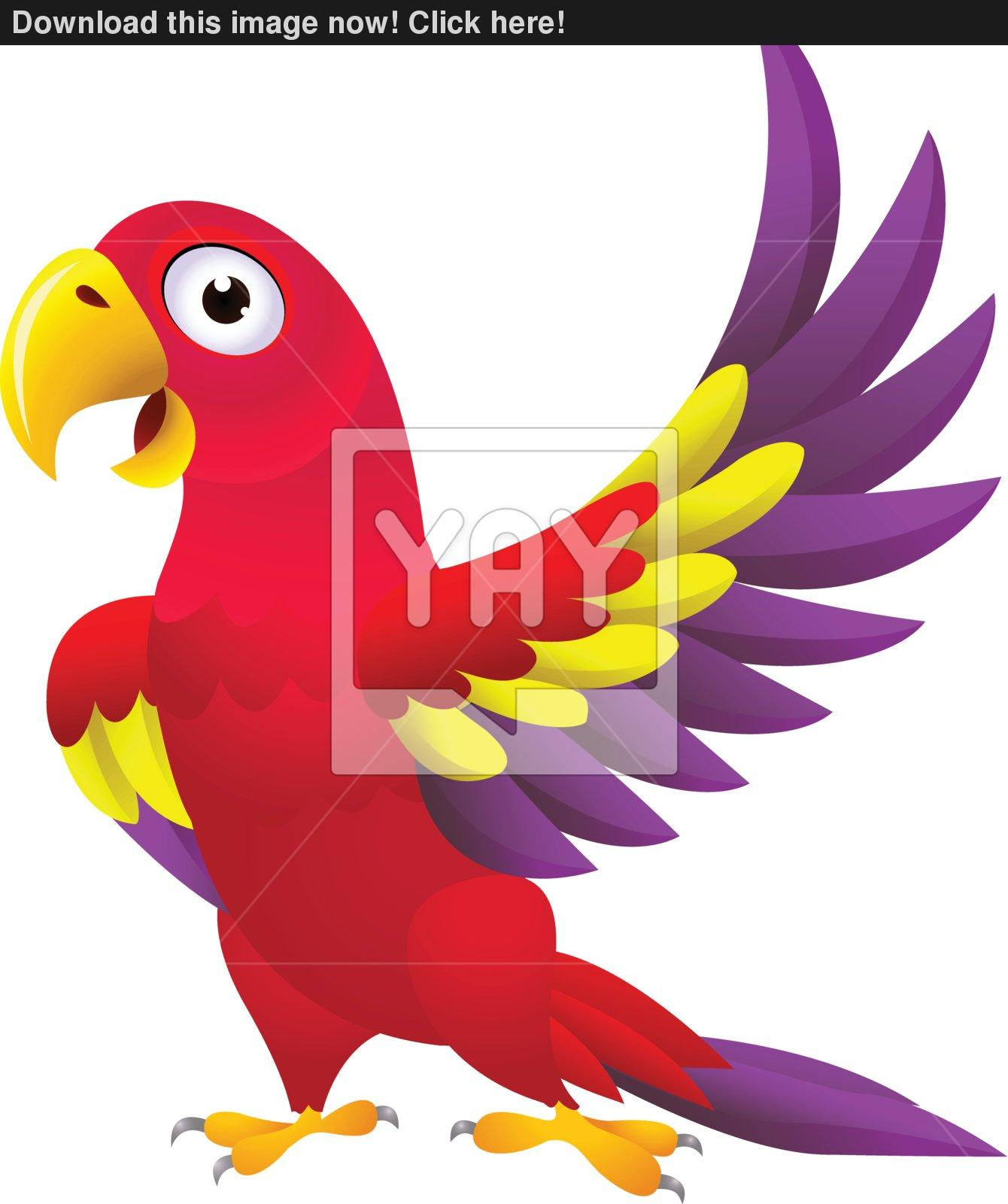 Detailed funny macaw bird cartoon vector.