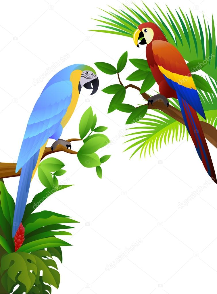 Parrot bird in the jungle — Stock Vector © dagadu #5711726.