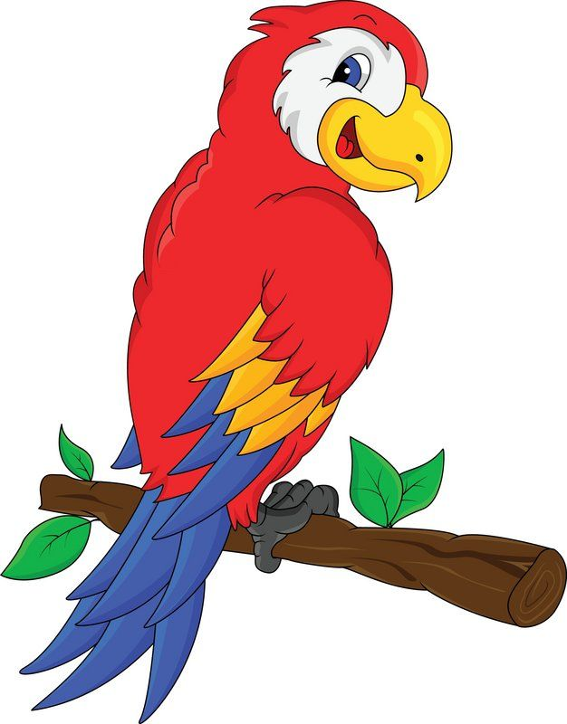jungle parrot clipart 20 free Cliparts | Download images ...