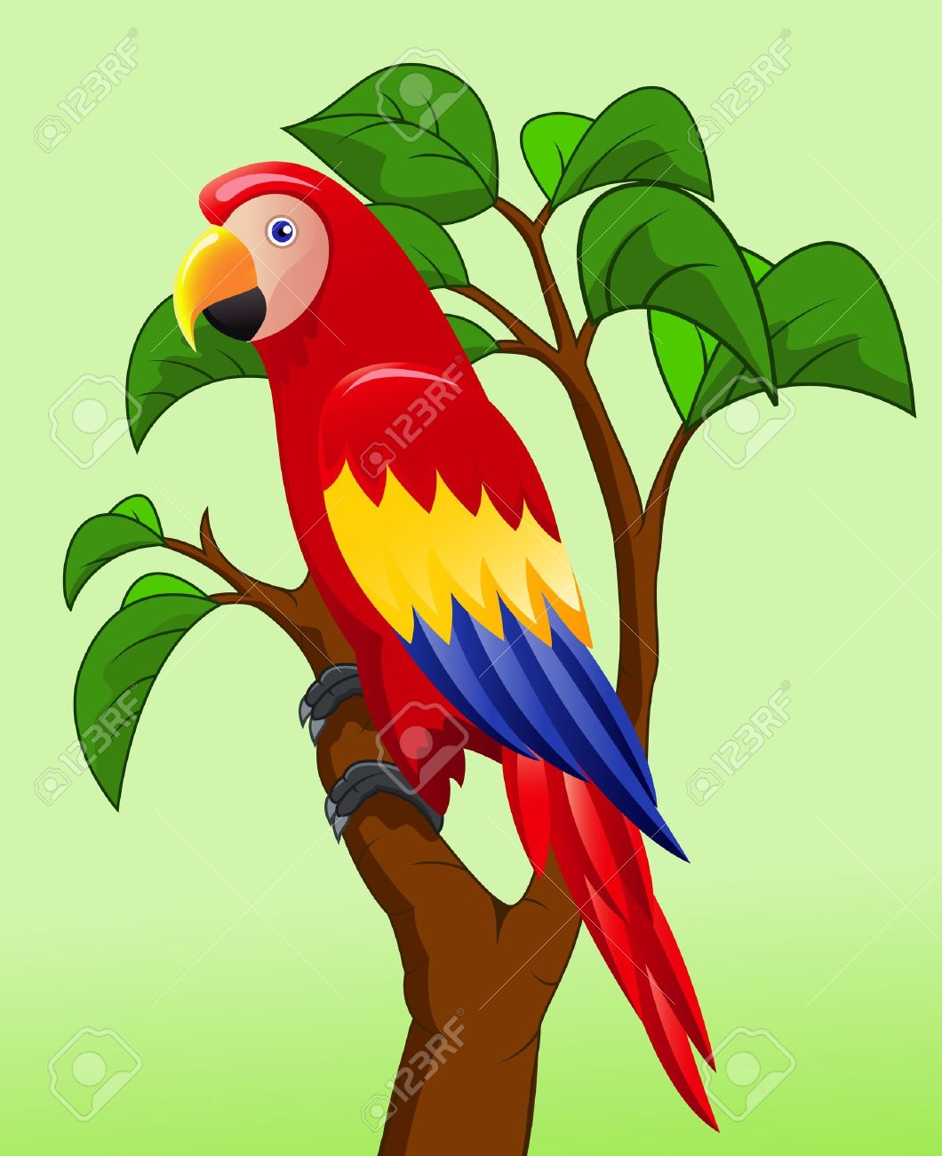 jungle parrot clip art Gallery.