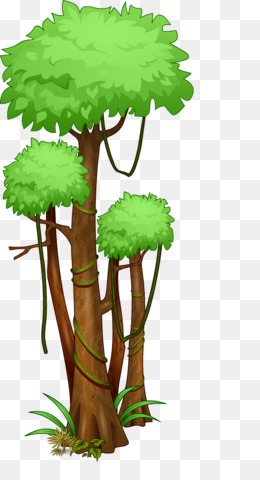 Jungle Tree png download.