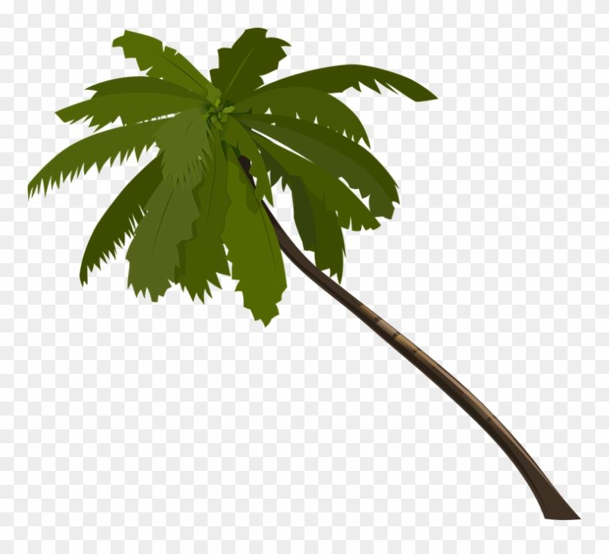 Jungle Trees Clip Art.
