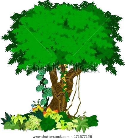 jungle tree clipart.
