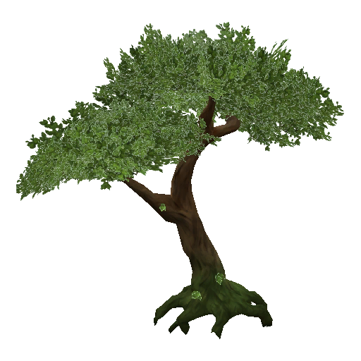 Download Jungle Tree PNG Transparent.