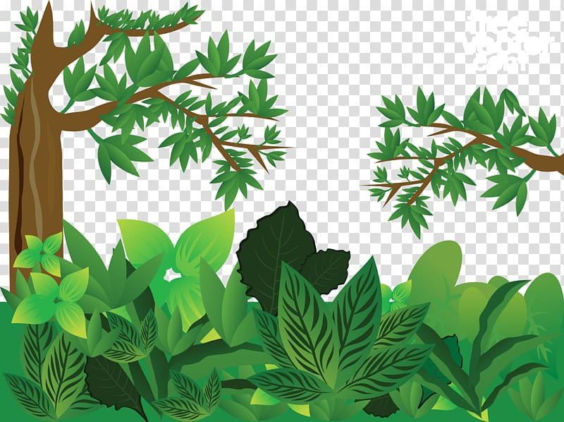 Green leaf plant illustration, Forest Euclidean , Green.