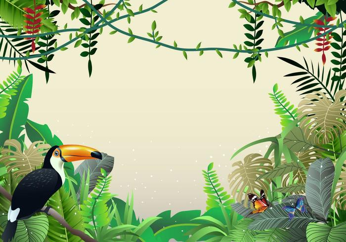 Beautiful Illustrations Of Tropical Jungle And Liana.