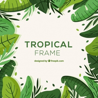 Jungle Vectors, Photos and PSD files.