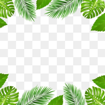 Jungle PNG Images.