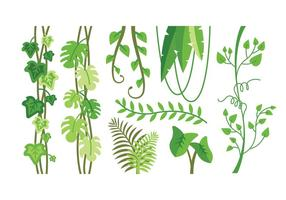Jungle Background Vector.