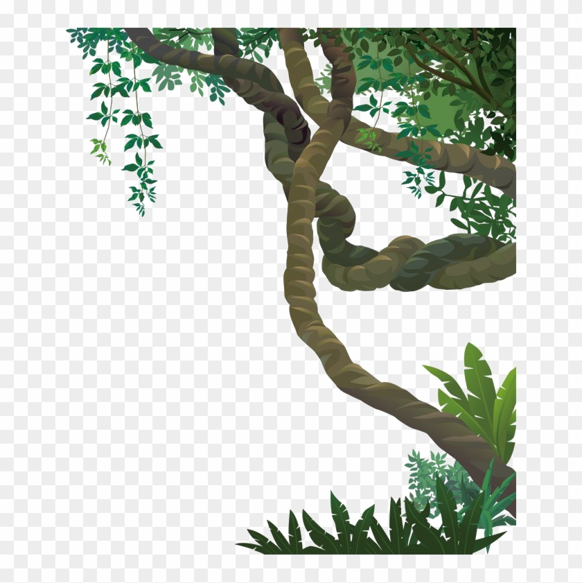Jungle Vines Png File.