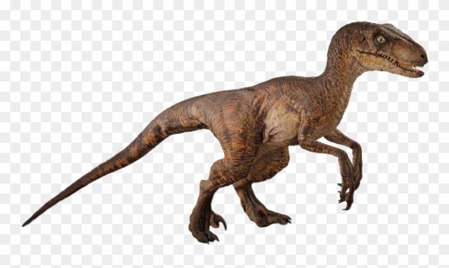 Jurassic Park Png.