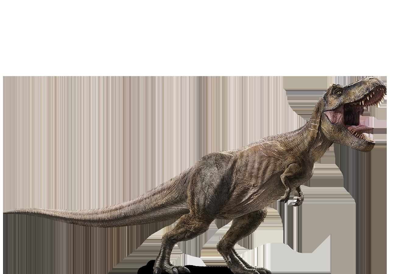 Jurassic Park PNG HD Image.