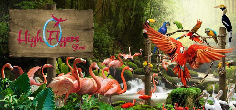 jurong bird sanctuary
