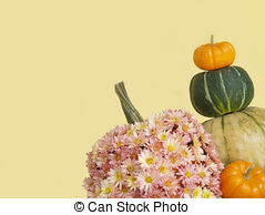 Pictures of Kabocha Squash also known as a Japanese pumpkin.