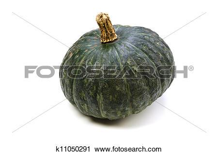 Stock Photography of kabocha squash k11050291.