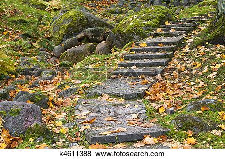 Pictures of Stone ladder in autumn park Kadriorg, Tallinn k4611388.
