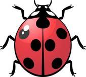 Clipart of Ladybugs k6766915.