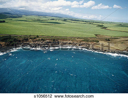 Stock Photo of Coastline Near Kahului with Sugar Cane Fields.