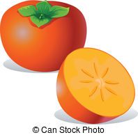 Persimmon Clipart Vector and Illustration. 483 Persimmon clip art.