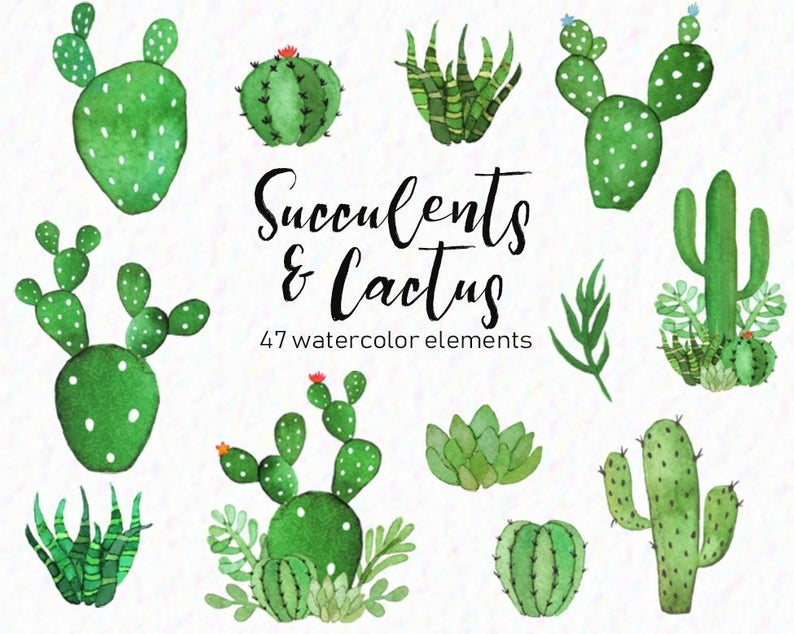 Download Free png Watercolor cactus cactus clipart.