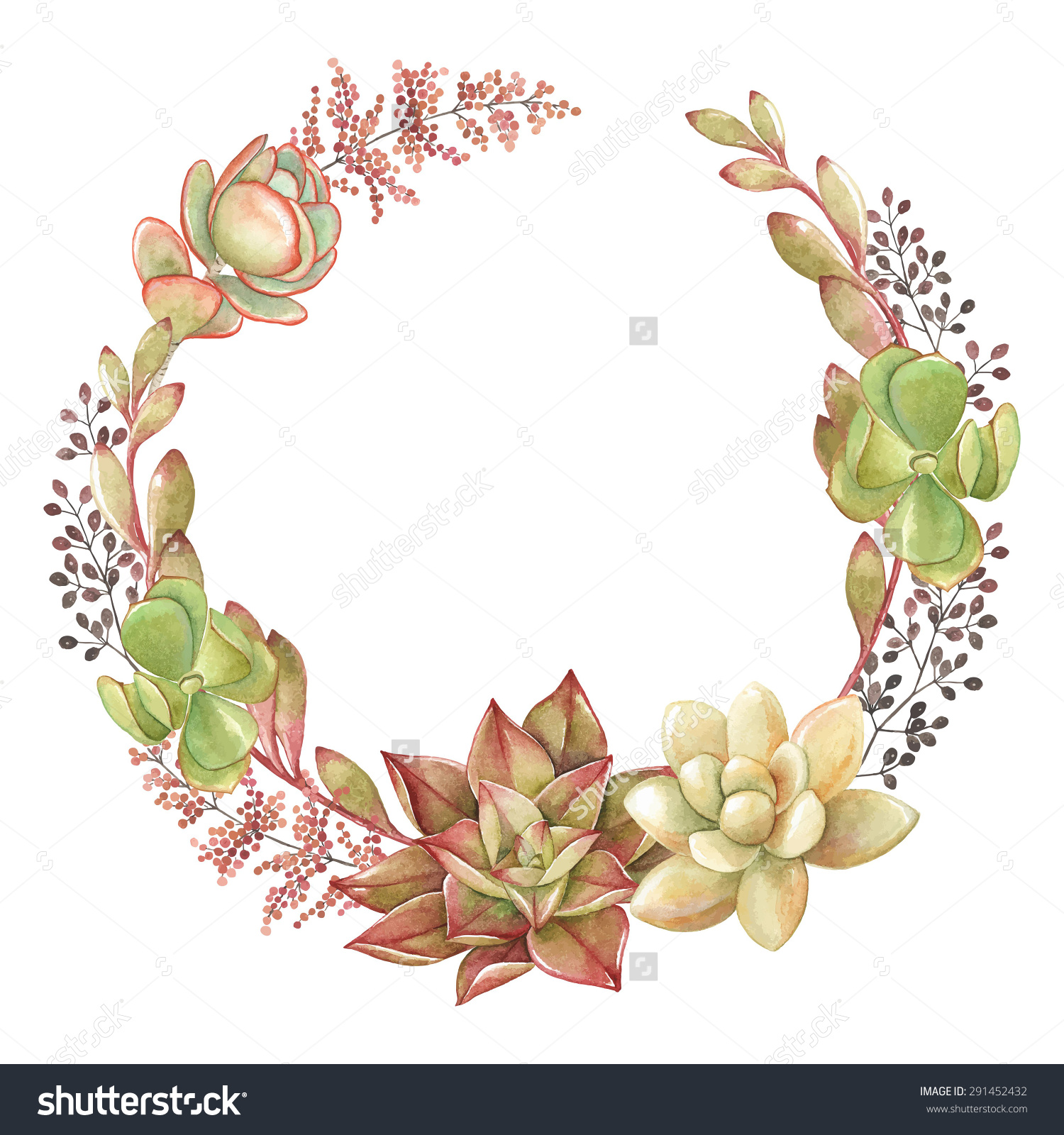 Wreath Succulents Kalanchoe Vector Watercolor Illustration Stock.