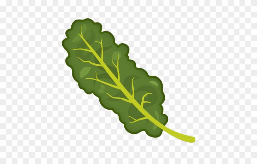 Kale Clipart Transparent.