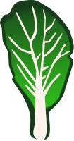Kale clipart #11