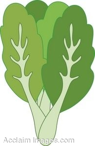 Clipart Illustration of a Bunch of Kale.