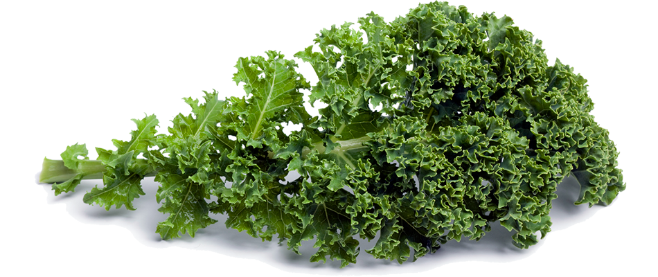 Kale PNG Images Transparent Free Download.