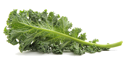 Download Free png Kale PNG Pic.