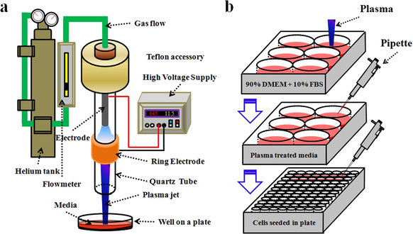 Principles of using Cold Atmospheric Plasma Stimulated Media for.