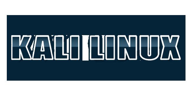 Fun with Kali Linux Bi.