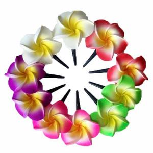Jual bunga kamboja cek harga di PriceArea.com.