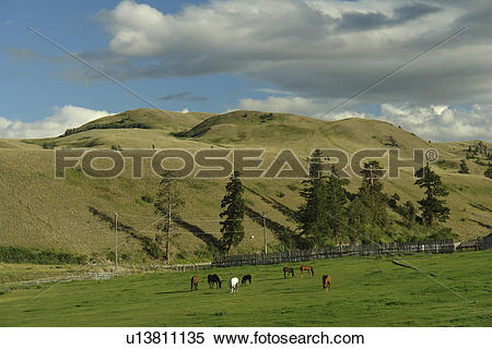 Stock Image of Kamloops, British Columbia, Canada, Route 5A.