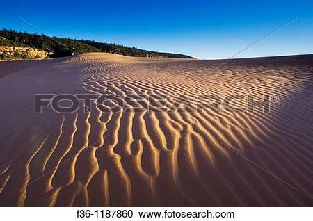 Stock Photography of Wind patterns in sand at sunset, Coral Pink.
