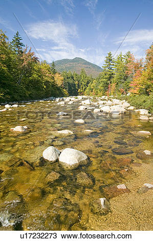 Stock Photo of An autumn waterway along the Kancamagus Highway in.