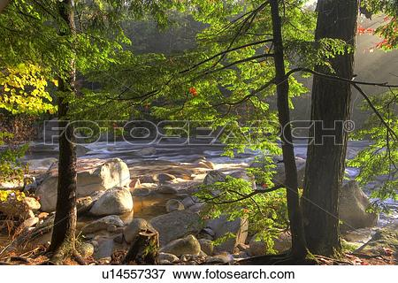 Picture of Rapids, Swift River, along Kancamagus Highway, White.