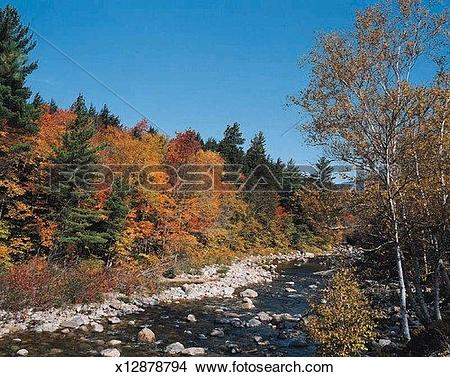 Stock Photo of Autumn along the Kancamagus Highway, White Mountain.