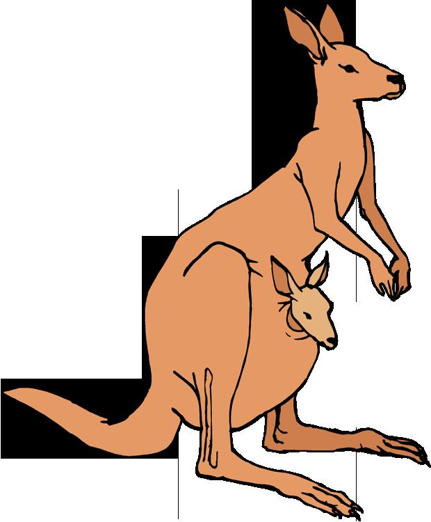 Kangaroo Clip Art Free.