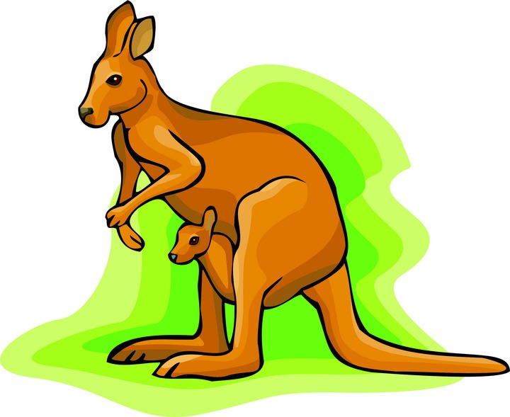 Kangaroo Clipart.
