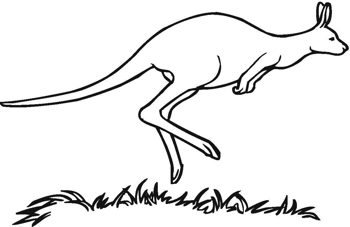 Kangaroo black and white clipart 4 » Clipart Portal.