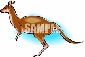 The_Side_Crouching_Kangaroo_Royalty_Free_Clipart_Picture_091106.